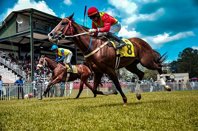競馬の画像。